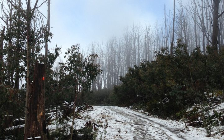Keppel Hut Snow Ride