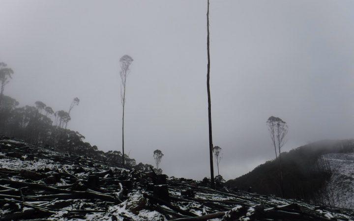Royston Range Apocalypse